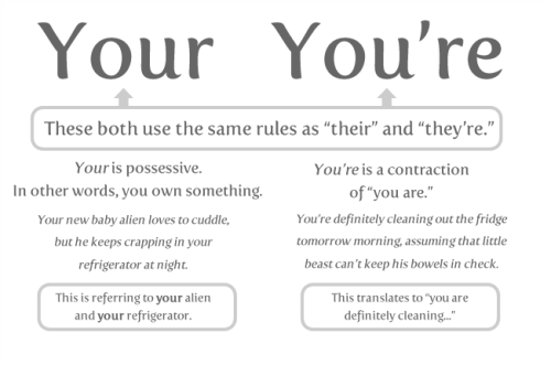 http://www.grammarics.com/wp-content/uploads/Oatmeal-Your-vs.-Youre.png